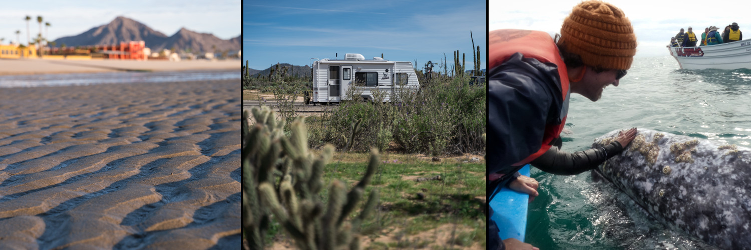 pictures in Baja of the ocean, the RV with cacti, and petting a grey whale